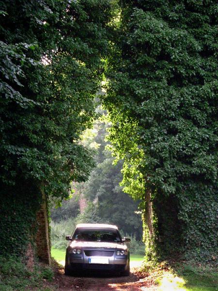 http://www.forumpassat.fr/concours-photo-3/Dotz.jpg
