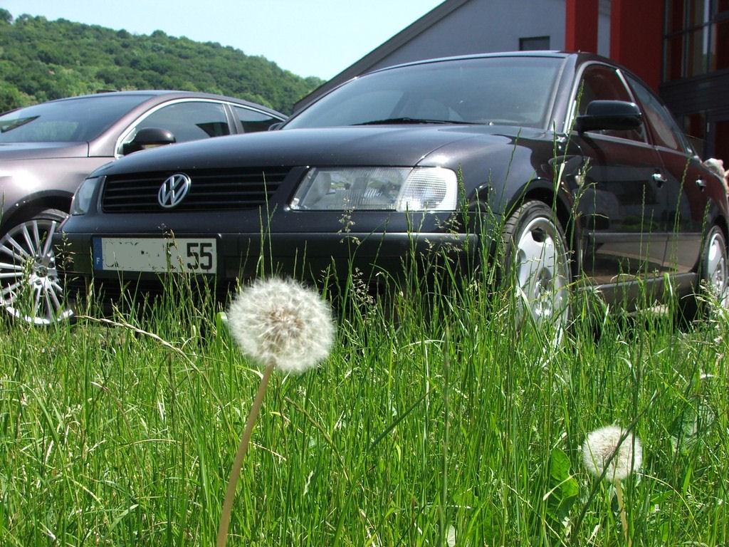 http://www.forumpassat.fr/uploads/11_meeting_fp5022.jpg